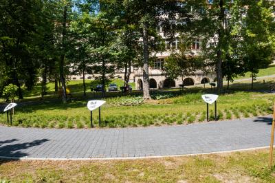 Ścieżki edukacyjne w parku - ptaki